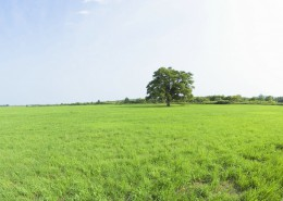 Government Regulated Grasslands Survey - Land Survey, Boundary Survey