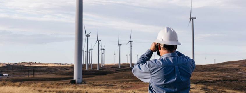 Wind Farm Surveyor